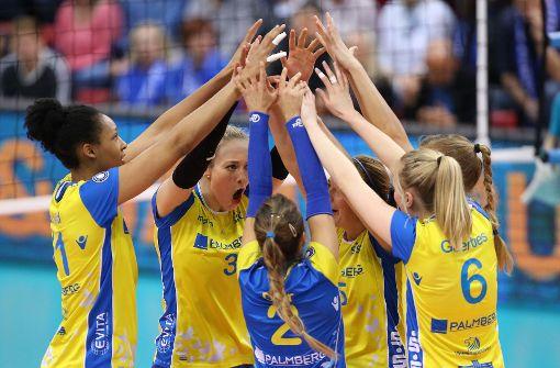 Volleyball: Mehr Mannschaftssport geht nicht