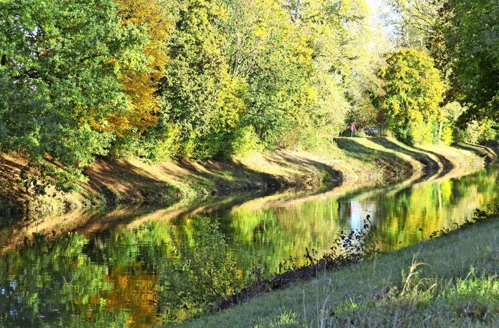 Eines der Fotos, die Michael Schäfer im vergangenen Herbst an der Rems gemacht hat. Seine Frau hat es als Grundlage für ein  Gemälde genutzt. Foto: Michael Schäfer