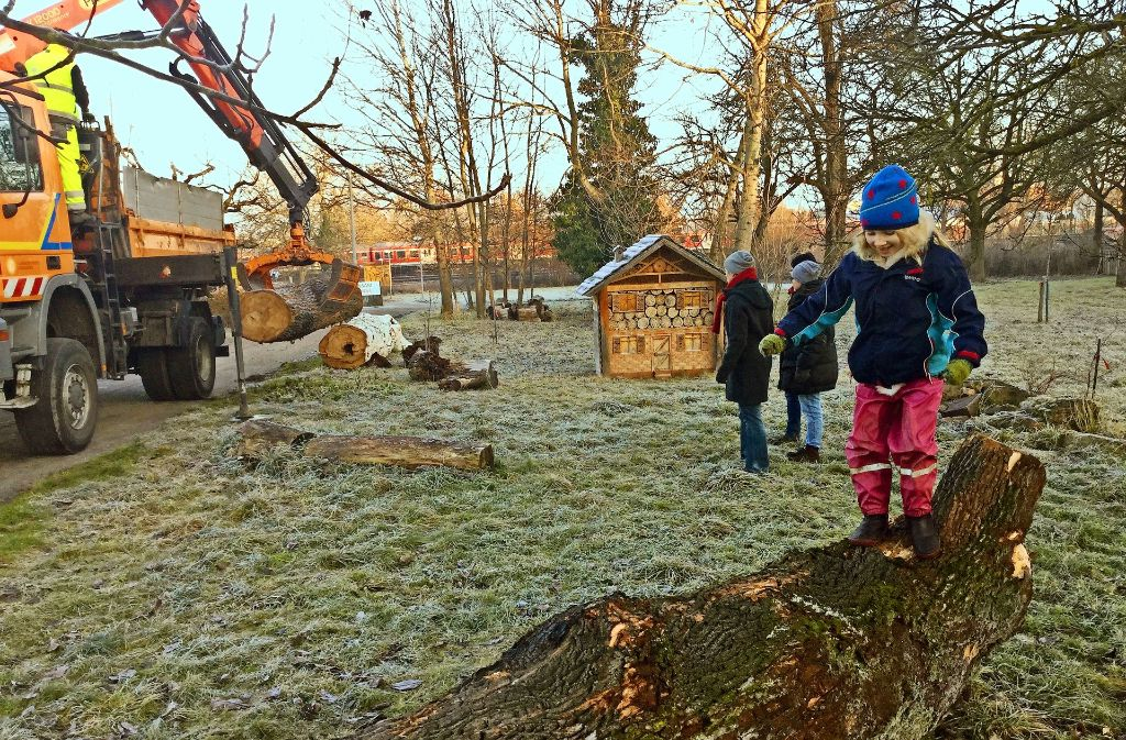 Ein Kind hat den alten Baumstamm schon freudig in Besitz genommen. Foto: privat