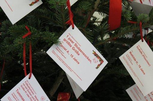 Wunschbaum steht im Rathaus