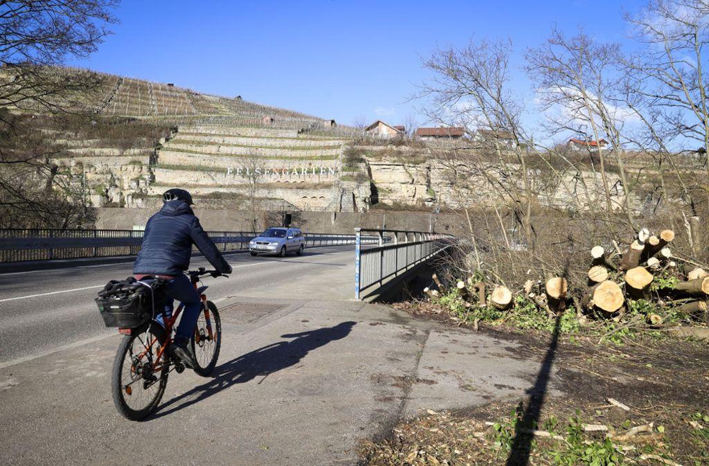 Oben oder unten lang? Eine Unterführung für Radler an der Enzbrücke zwischen Walheim und Besigheim ist noch nicht vom Tisch. Foto: factum/Simon Granville