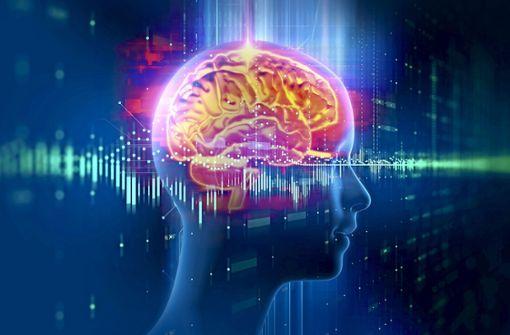 Künstliche Intelligenz: Mut zum Risiko