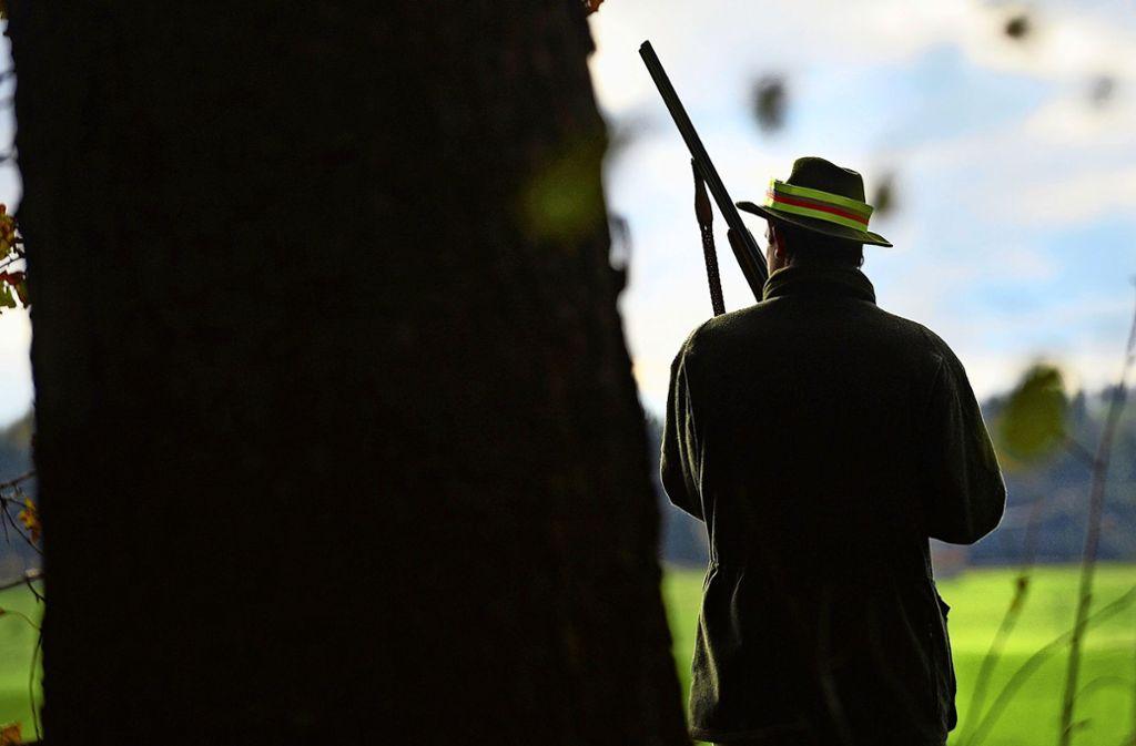 Ein Jäger auf der Lauer Foto: dpa/Felix Kästle