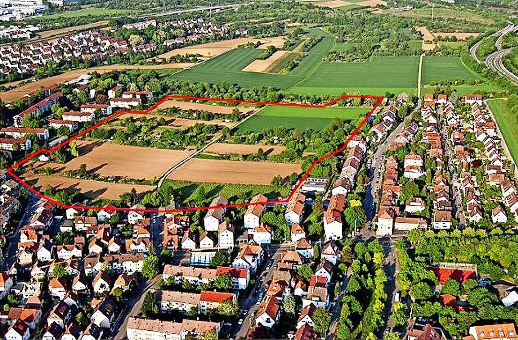 Rot umrandet ist das 8,8 Hektar große Baugebiet im Stammheimer Osten. Foto: Archiv