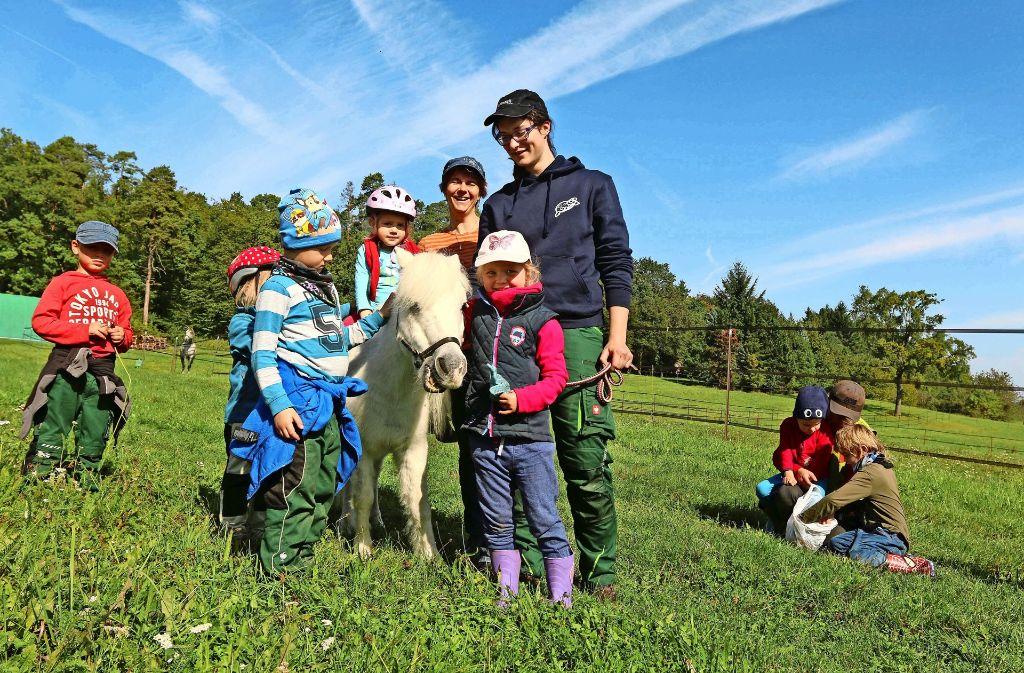 Pony Susi ist hier der Star: Am Ponytag besuchen die Kinder des Waldkindergartens Heimsheim das Barockreitzentrum. Foto: Andreas Gorr