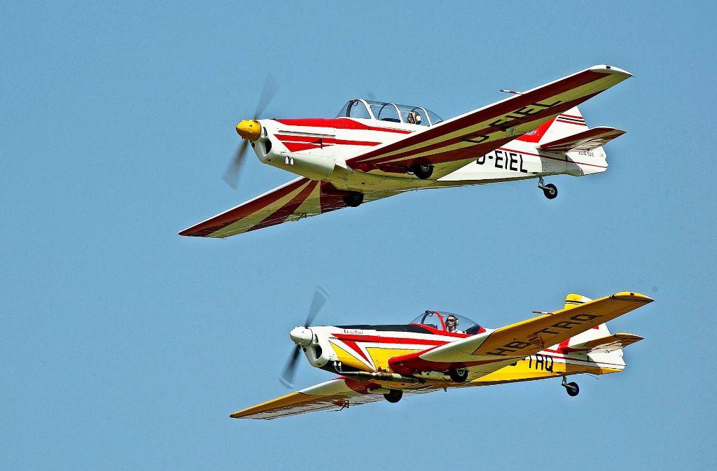 Zwei der einst weit verbreiteten und heutzutage selten gewordenen Zlins im Formationsflug: Am Messelberg trafen sich jetzt Foto: Rudel