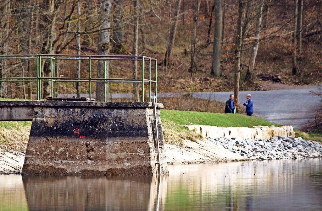 Netze BW und Wasserforum sind unterschiedlicher Meinung, wem der Steinbach- und der Katzenbachsee (Foto) gehören. Foto: Archiv R.  Ott
