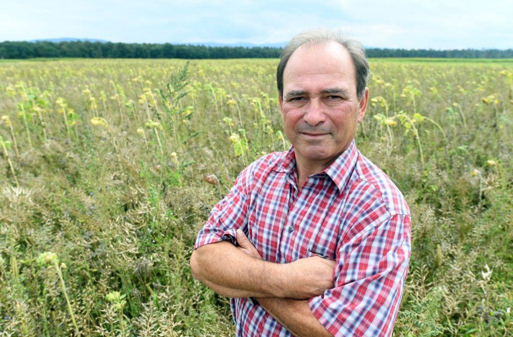 Der Landwirt Stefan Schneider steht an einer seiner Ackerflächen aus der er eine Bienenweide gemacht hat, da der Boden mit sogenannten per- und polyfluorierte Chemikalien (PFC) belastet ist. Foto: dpa
