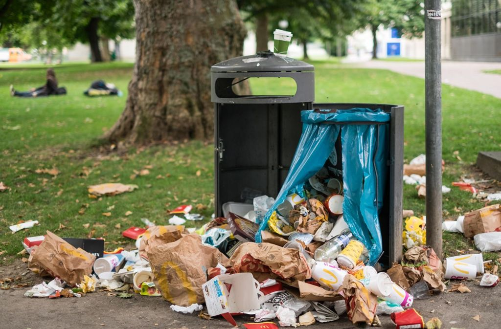 Überquellende Mülltonnen gehören im Sommer zu Ärger vieler Bürger zum Stadtbild dazu. Foto: Lichtgut/Max Kovalenko