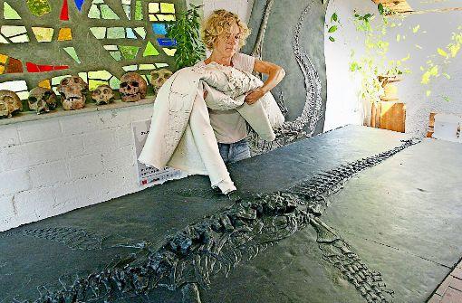 Urzeitliche Meeresjäger