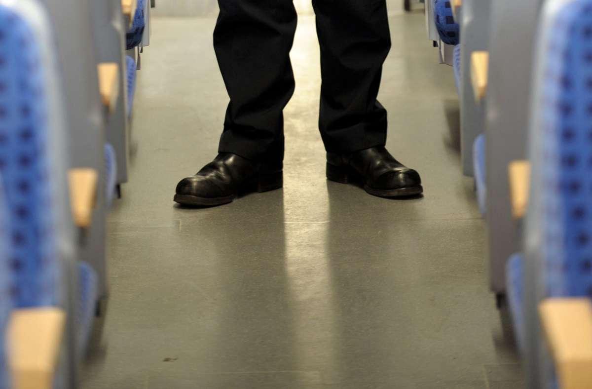 Zwei Jugendliche gaben sich als Zugbegleiter aus (Symbolbild). Foto: picture alliance / dpa/Franz-Peter Tschauner