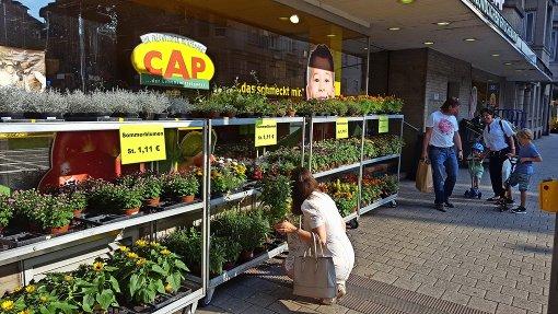 Der Cap-Markt im Westen als Vorbild