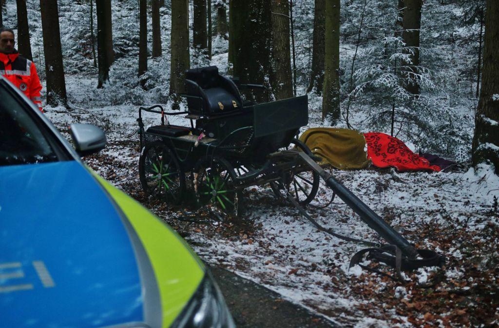 Der Kutscher war bei dem Unfall vom Kutschbock geschleudert worden. Foto: 7aktuell.de/ Lermer