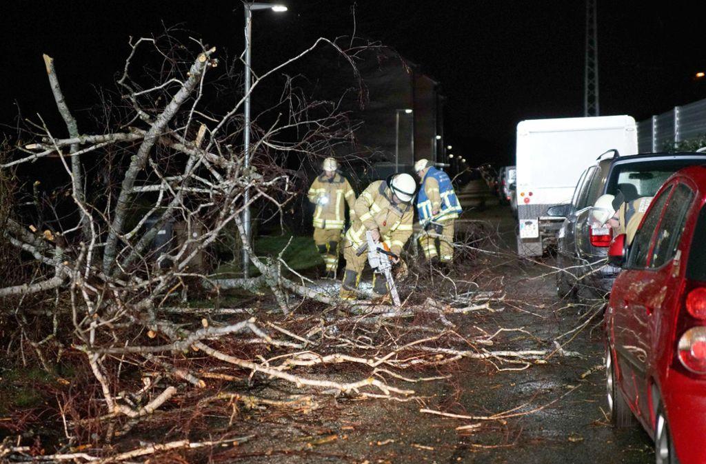 Auch in Esslingen hatte der Sturm gewütet. Foto: dpa/Sven Kohls