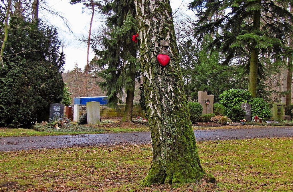 Auf dem Waldfriedhof gibt es schon seit 2005 Baumgräber. Foto: Fritsch