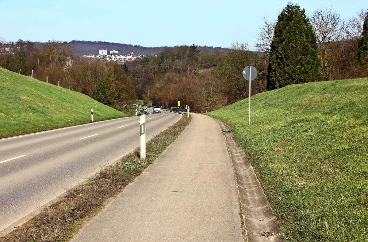 Noch ist der Weg entlang der Landesstraße zu schmal  für Fußgänger und den Radverkehr. Foto: Katja Eisenhardt