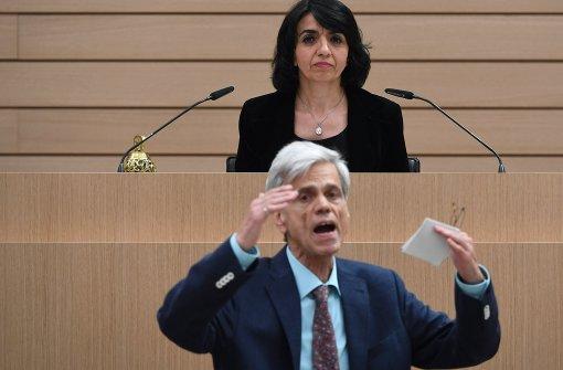 Vorwürfe gegen AfD-Abgeordneten Gedeon