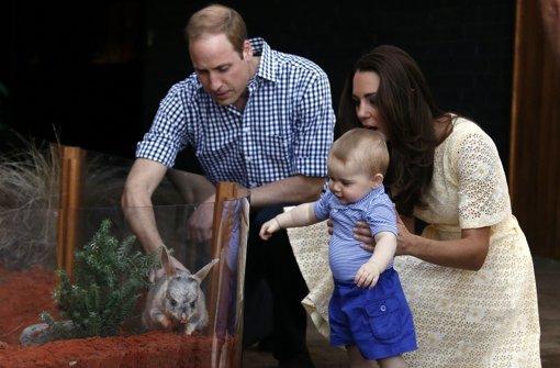 Baby George trifft Bilby George