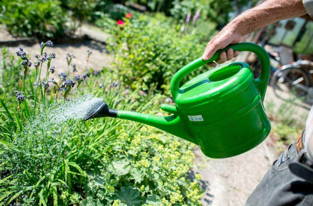 Regelmäßiges Gießen reicht nicht, um einen schönen Garten zu haben. Foto: dpa