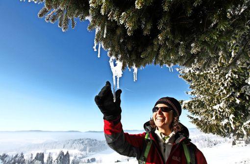 Premiumwandern im Schnee
