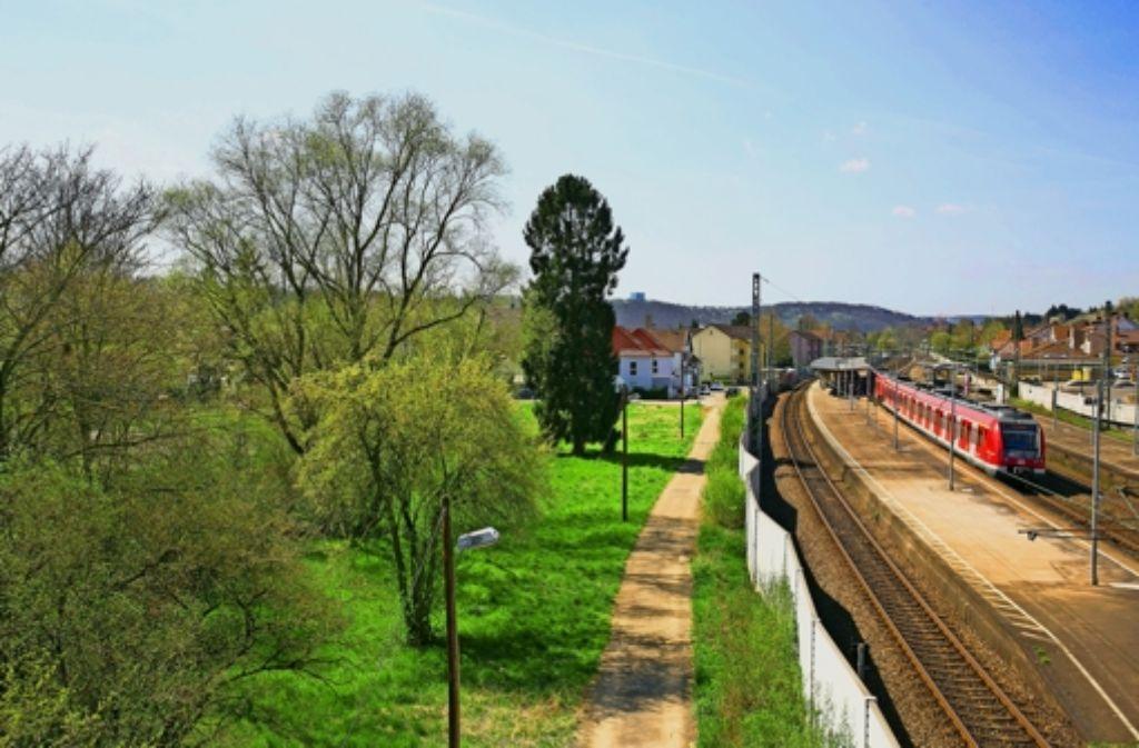 Die Fläche südlich der S-Bahn in Zell ist  als Standort für eine Flüchtlingsunterkunft genehmigt worden. Foto: Horst Rudel