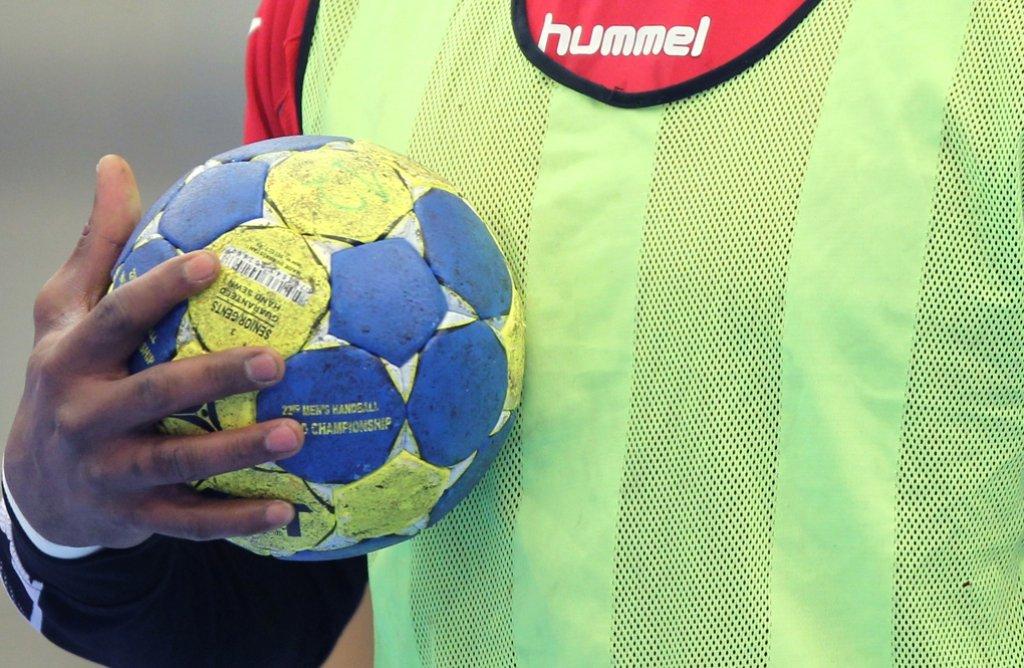 Trotz Niederlage: Das Erlebnis Porsche-Arena nimmt den Leonberger Handballern keiner mehr. Foto: dpa