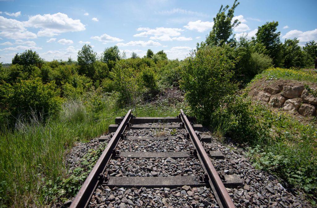 Geld vom Bund gibt es künftig auch für die Wiederinbetriebnahme stillgelegter Bahnstrecken (hier bei Markgröningen). Foto: picture alliance/dpa/Marijan Murat