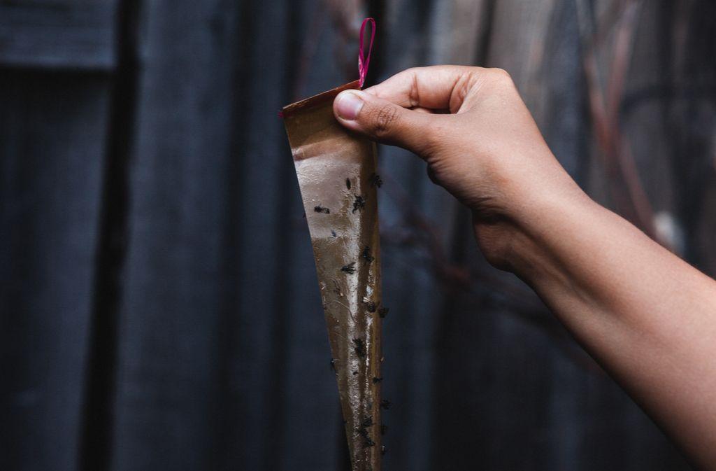 Auch Klebestreifen lassen sich mit Hausmitteln selbst herstellen. Foto: Olga Belyaevskaya / shutterstock.com