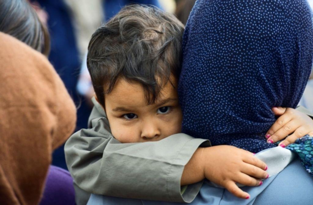Die Flüchtlingszahlen steigen. Foto: dpa-Zentralbild
