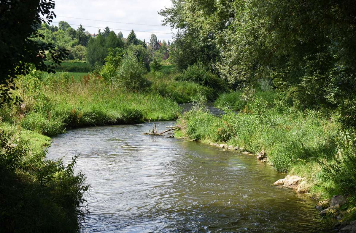 Auch aus der Würm darf bis September kein Wasser entnommen werden. Die einzige Ausnahme bildet die Stelle unterhalb des Schwippezuflusses bei Schafhausen. Foto: /Thomas Bischof