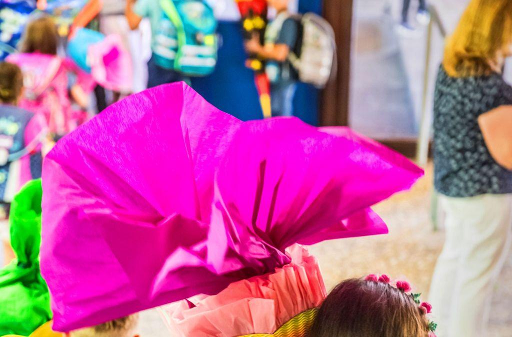 Die Einschulung ist nicht für alle Kinder ein Freudentag. Foto: Lg/Julian Rettig, privat