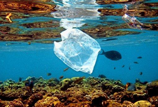 Das Meer ist keine Müllkippe