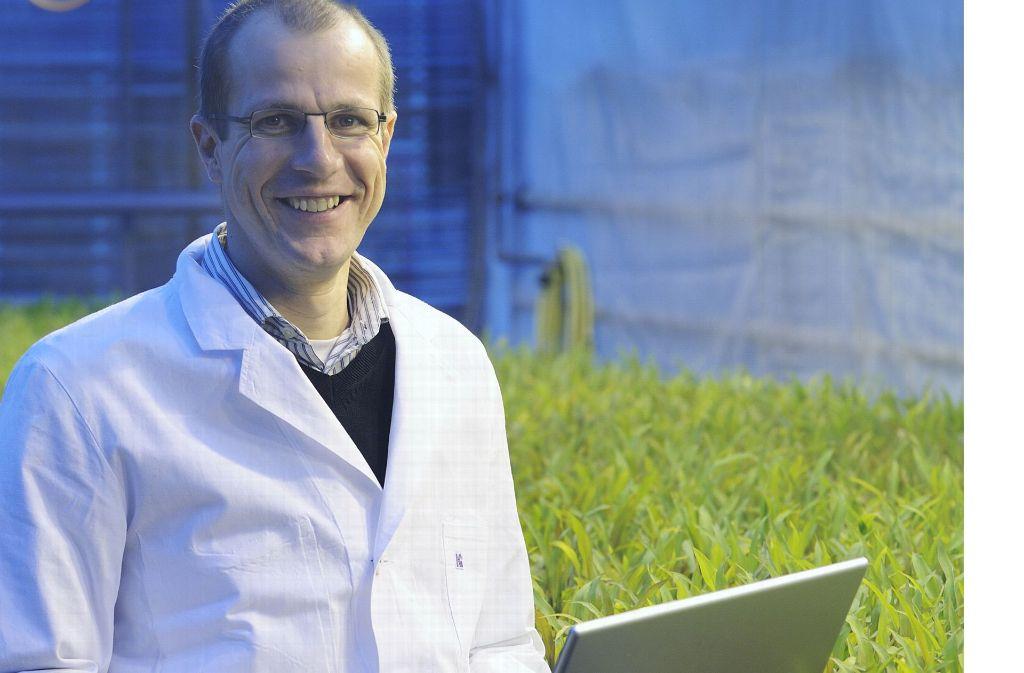 Der Hohenheimer Züchtungsinformatiker Karl Schmid erforscht, wie sich Pflanzen vermehren und wie man das genetisch beeinflussen kann. Foto: Uni Hohenheim/Oskar Eyb