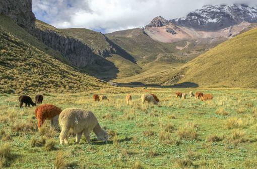 Naturparadies Ecuador – Reise zum Mittelpunkt der Welt
