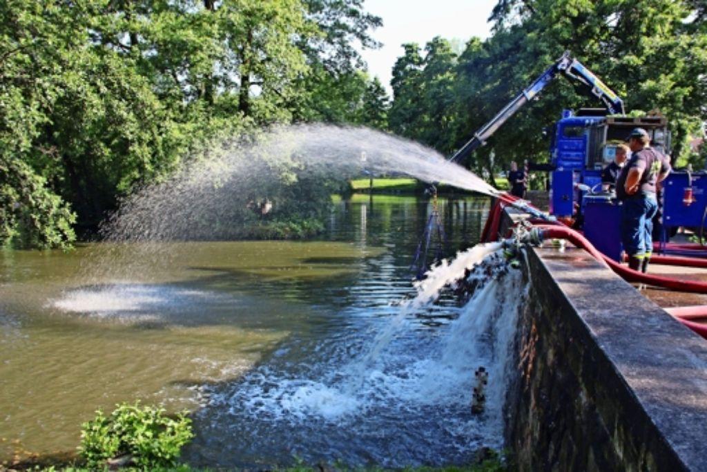 Im Sommer mussten die Helfer ausrücken, um Wasser in den Riedsee zu pumpen. Der Weiher drohte umzukippen, die Fische wegen Sauerstoffmangels zu sterben. Foto: dpa