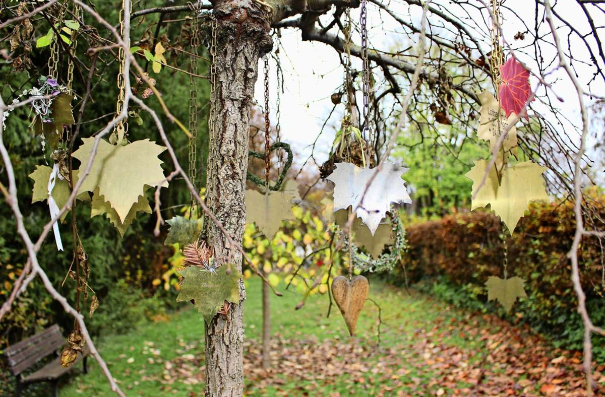Auf dem Unteren Friedhof in Sielmingen gibt es bereits  Baumgräber.  Ein graviertes Metallblatt erinnert an den  Verstorbenen. Foto: Caroline Holowiecki