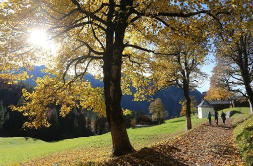 Kräftiger Regen im Südschwarzwald und Allgäu