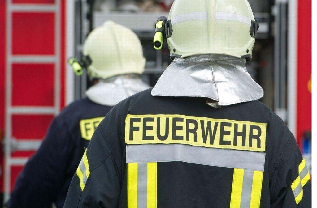 Zahlreiche Feuerwehrmänner sind im Einsatz. Foto: dpa-Zentralbild