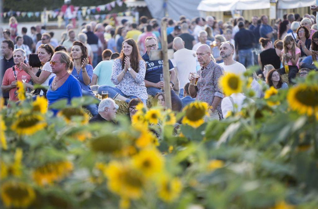 Dieses Festival im Sonnenblumenfeld besitzt seinen ganz eigenen Charme. Foto: