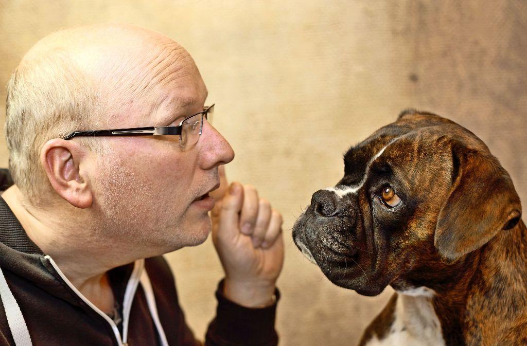 Die Beziehung zwischen Mensch und Hund ist oft nicht einfach. Das führt manchmal zu Stress auf beiden Seiten der Leine. Wenn und Herrchen sich  gut verstehen, können sie dagegen auch schwierige Situationen gemeinsam meistern. Foto: Jana Behr/Adobe Stock
