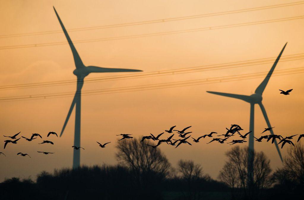 Bürger können bei Klimaschutzmaßnahmen im Land mitreden. (Symbolfoto) Foto: dpa