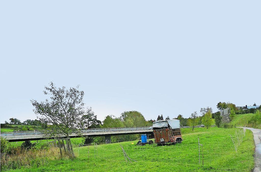 Auf dieser Wiese ließ der Landwirt drei Schafe weiden. Eines wurde geschächtet, eines  vermutlich gestohlen. Foto: Polizei Foto: