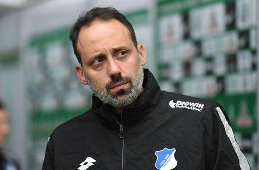 Pellegrino Matarazzo wird neuer VfB-Trainer