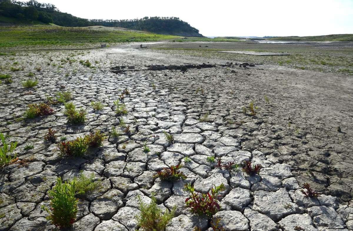 Risse ziehen sich über den trocken liegenden Grund eines Wasserreservoirs in Camanche in Kalifaornien (USA). Wegen anhaltender Dürre waren damals die Wasserreserven im Südwesten der USA stark zurückgegangen. Foto: Michael Nelson/EPA/dpa