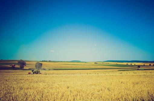 Biogut: Wie aus Müll Energie wird