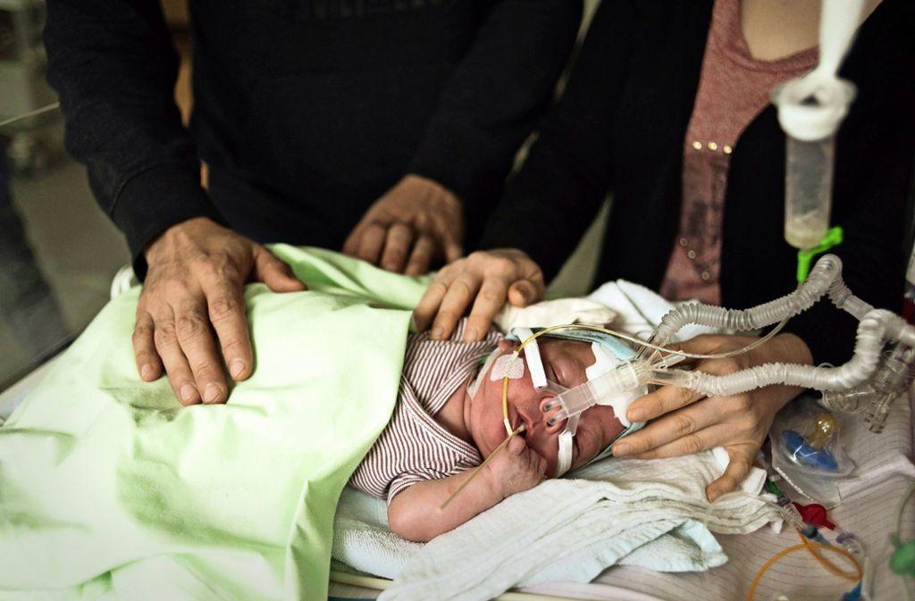 Maximilian ist ein sehr ausgeglichenes Baby, was für Extremfrühchen eher ungewöhnlich ist. Foto: Lichtgut/Max Kovalenko