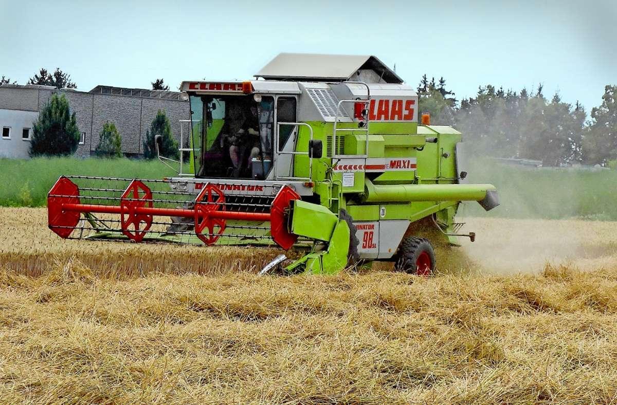 Die Mähdrescher sind los: Die ersten Stoppelfelder prägen schon die Landschaft –  auf den Feldern zwischen Oeffingen und Fellbach wird bereits in dieser  Woche  das Korn eingebracht. Foto: Ingrid Sachsenmaier