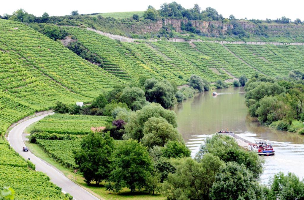 Den Neckar entlanglaufen für einen guten Zweck – jetzt kommt Scherer nach Ludwigsburg. Foto: dpa