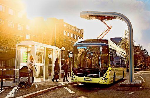 Elektrobusse für neue Linie sind Mangelware