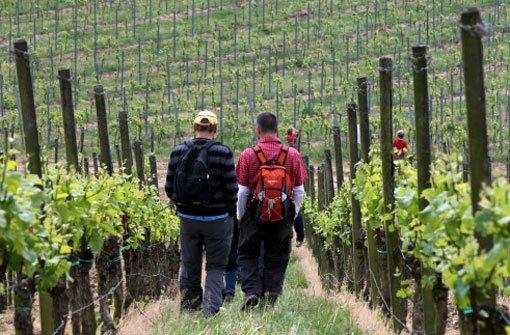 13. Mai: Weinwanderung endet mit Schlägerei